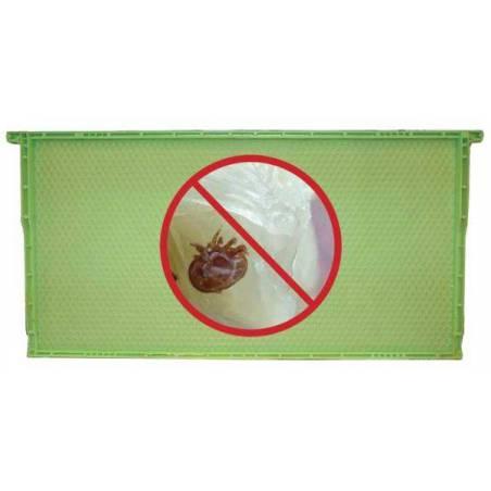 Cadre en plastique alvéole mâle Lutte complémentaire contre le varroa