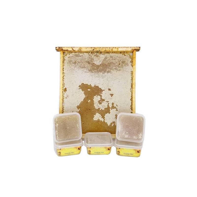 Acorn honey comb 250g Honey