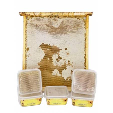 Panal de miel de bellota 250g Miel