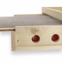 Apishield plancher-piège à guêpes Lutter contre le Frelon