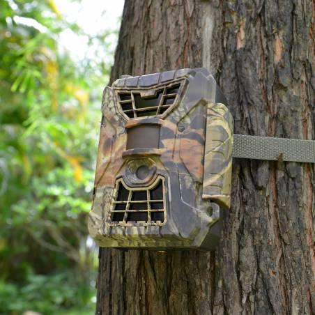 Cámara seguridad fototrampeo antirobo colmenas Monitorización y seguridad