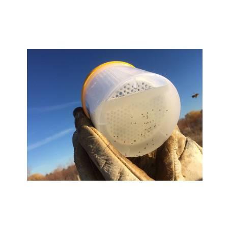 Varroa Easycheck Lucha complementaria contra varroa