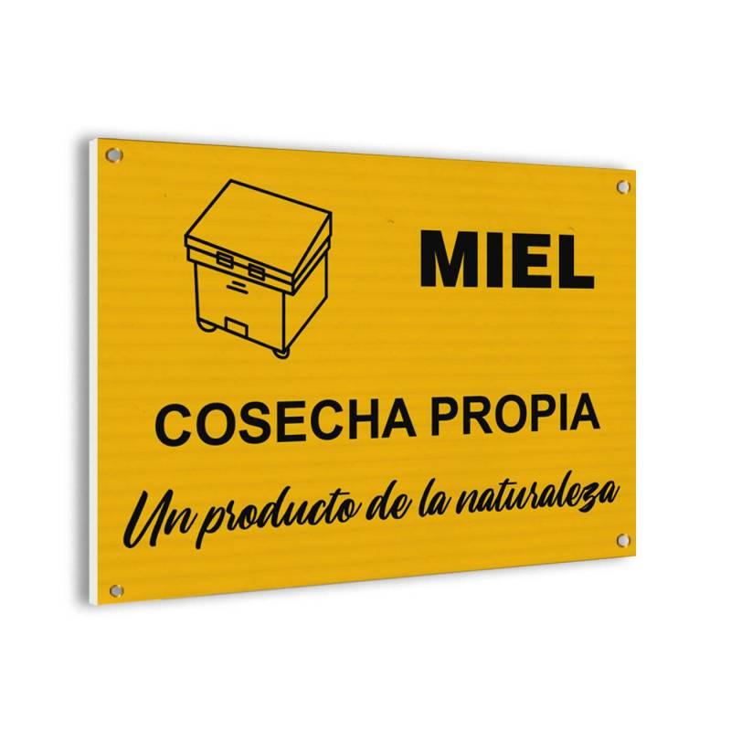 Affiche de la vente de miel Panneaux d'avertissement