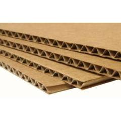 Bandes de carton ondulé (paquet de 20 bandes) Hygiène de la ruche