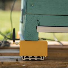 Beehive monitoring scale 3Bee Apiary monitoring and security