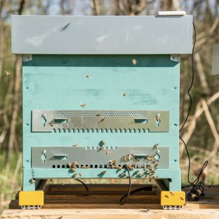 Beehive monitoring complete scale 3Bee Apiary monitoring and security