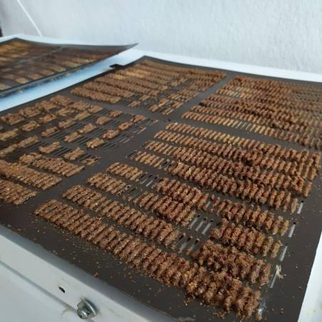 Grille à propolis 425x510 AU RUCHER