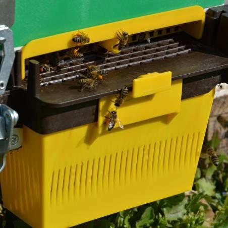 Trappe pollen pour plateau Anel Recolter le pollen