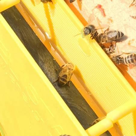 Alimentador de cuadro Langstroth 3kg Alimentadores para colmenas