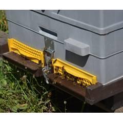 Fond de ruche ANEL Eléments de ruches