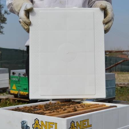 Toit de ruche en plastique Eléments de ruches
