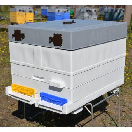 10F Plastic Langstroth body Langstroth Beehives