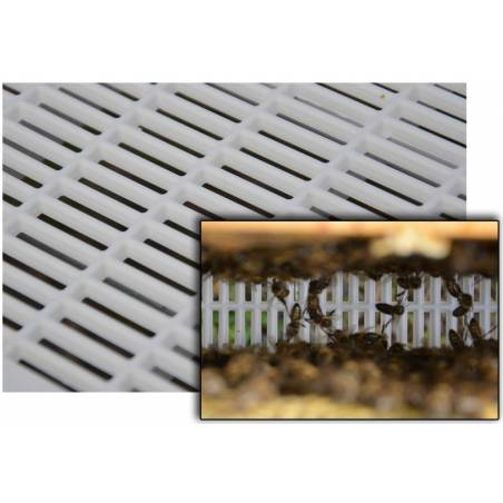 Ventilated bottom board Beehive Accessories