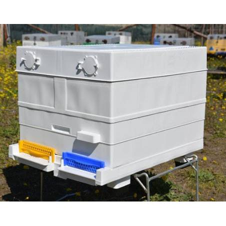 10F Plastic Langstroth body Langstroth Beehives