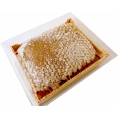 Section plastique pour miel en rayon NICOT Eléments de ruches