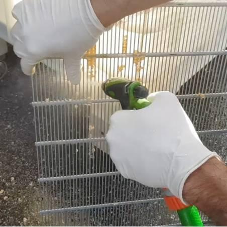 AlveisClean® (Limpieza de propoleo y cera) Limpieza e higiene apícola