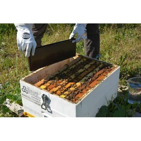 Alimentador cuadro Alimentadores para colmenas