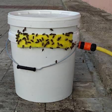 Bee Trough self refilling Feeders