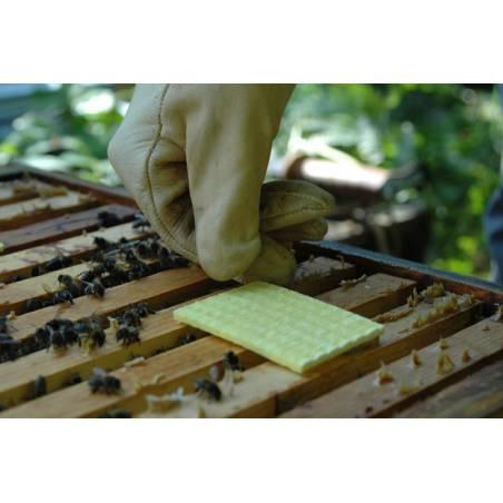 Thymovar Medicamentos contra varroa