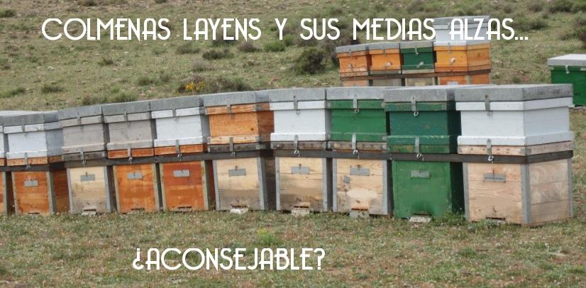 LAS COLMENAS LAYENS Y SUS MEDIAS ALZAS